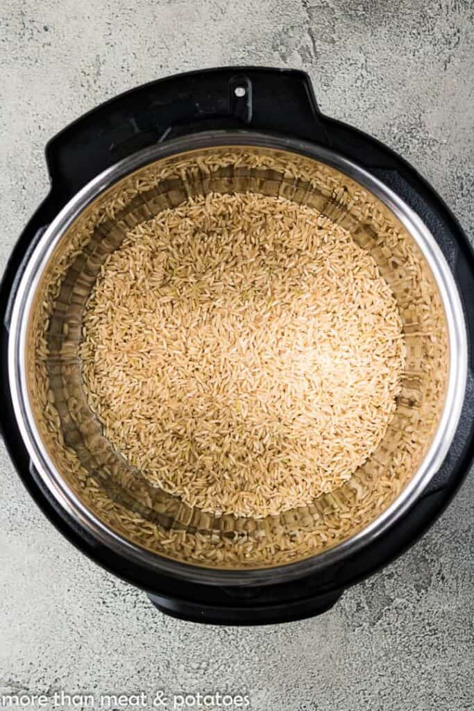 Dry rice added to the stainless steel liner.