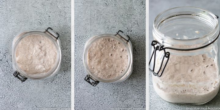 Collage of photos that shows what a sourdough starter looks like as it's being fed.