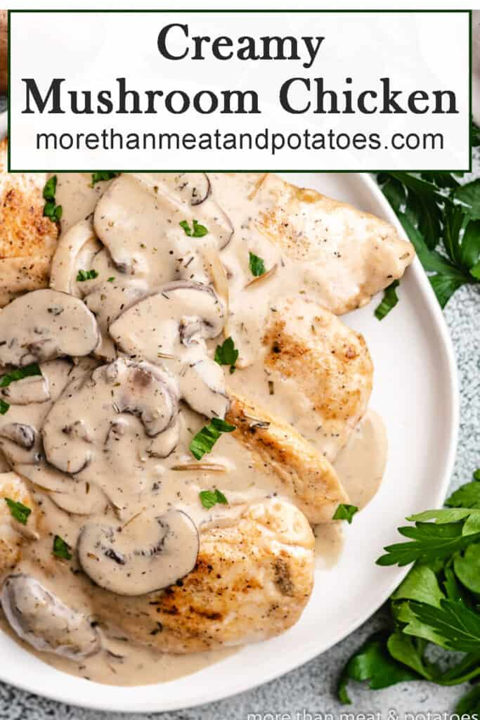 Close-up view of the savory creamy mushroom chicken.