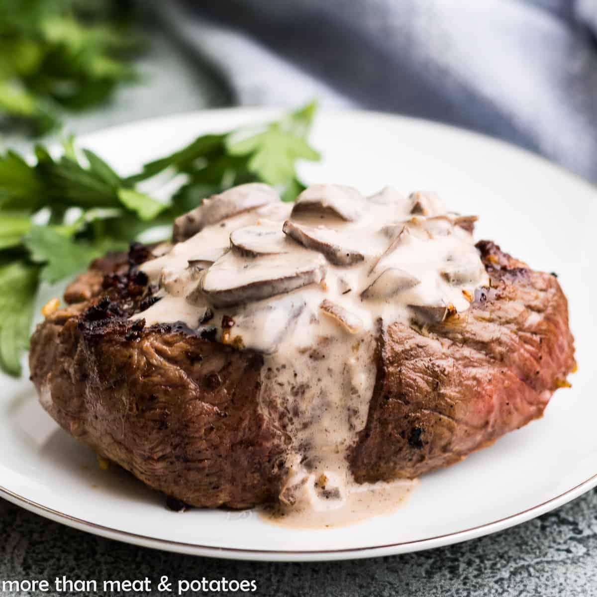 The creamy mushroom sauce poured over a steak.