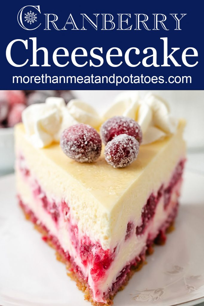 Front on view of cheesecake with sugared cranberries.
