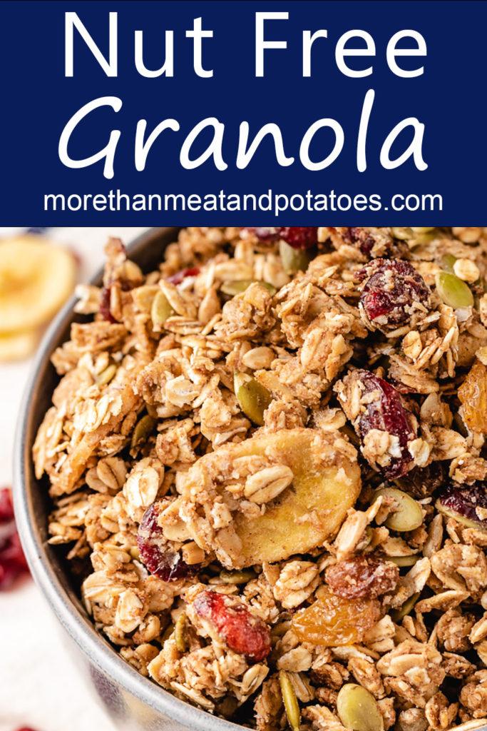 Close up of a bowl of nut free granola.