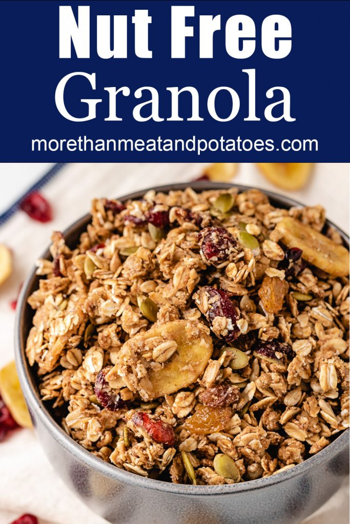 A bowl of homemade granola with banana chips.