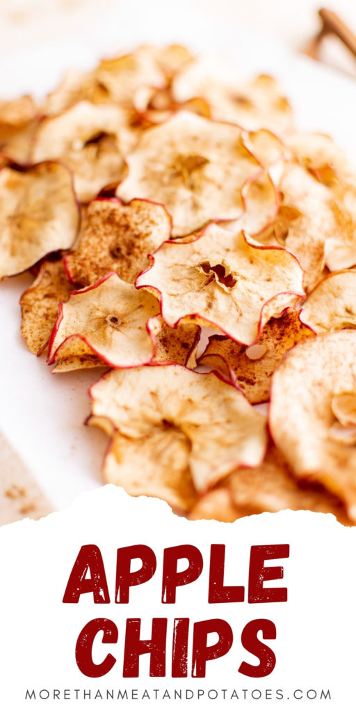 Dehydrated apple chips on a plate.