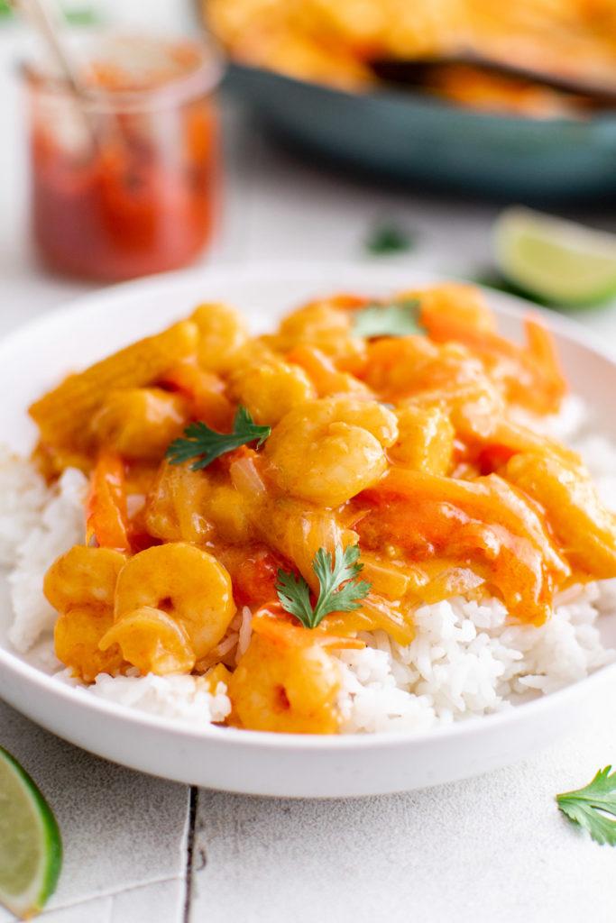 Seasoned seafood on rice.