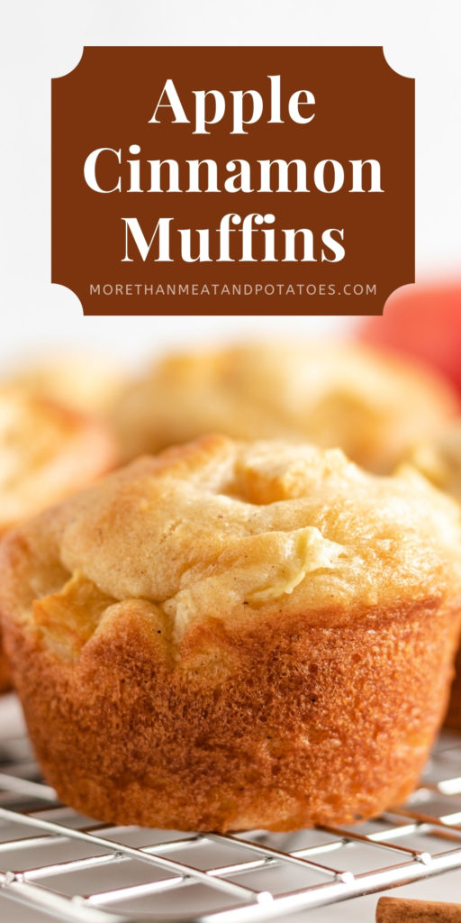 Close up view of an apple cinnamon muffin.